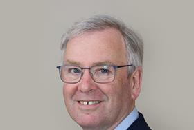 Consultant to lead large STP